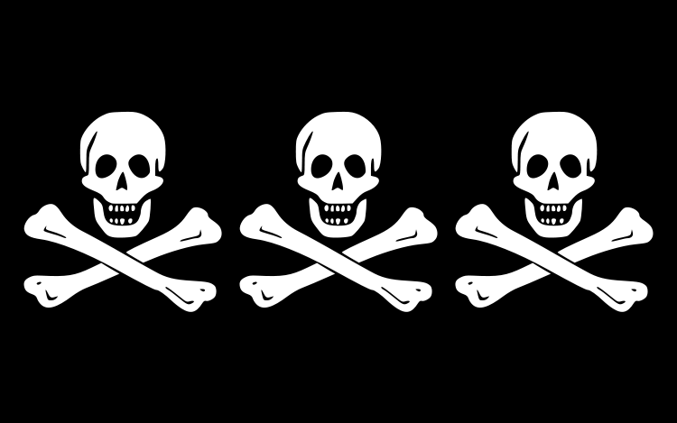http://www.thepirateking.com/images/bios_condent_flag.png
